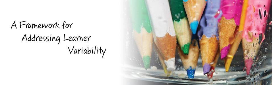 A Framework for Addressing Learner Variability